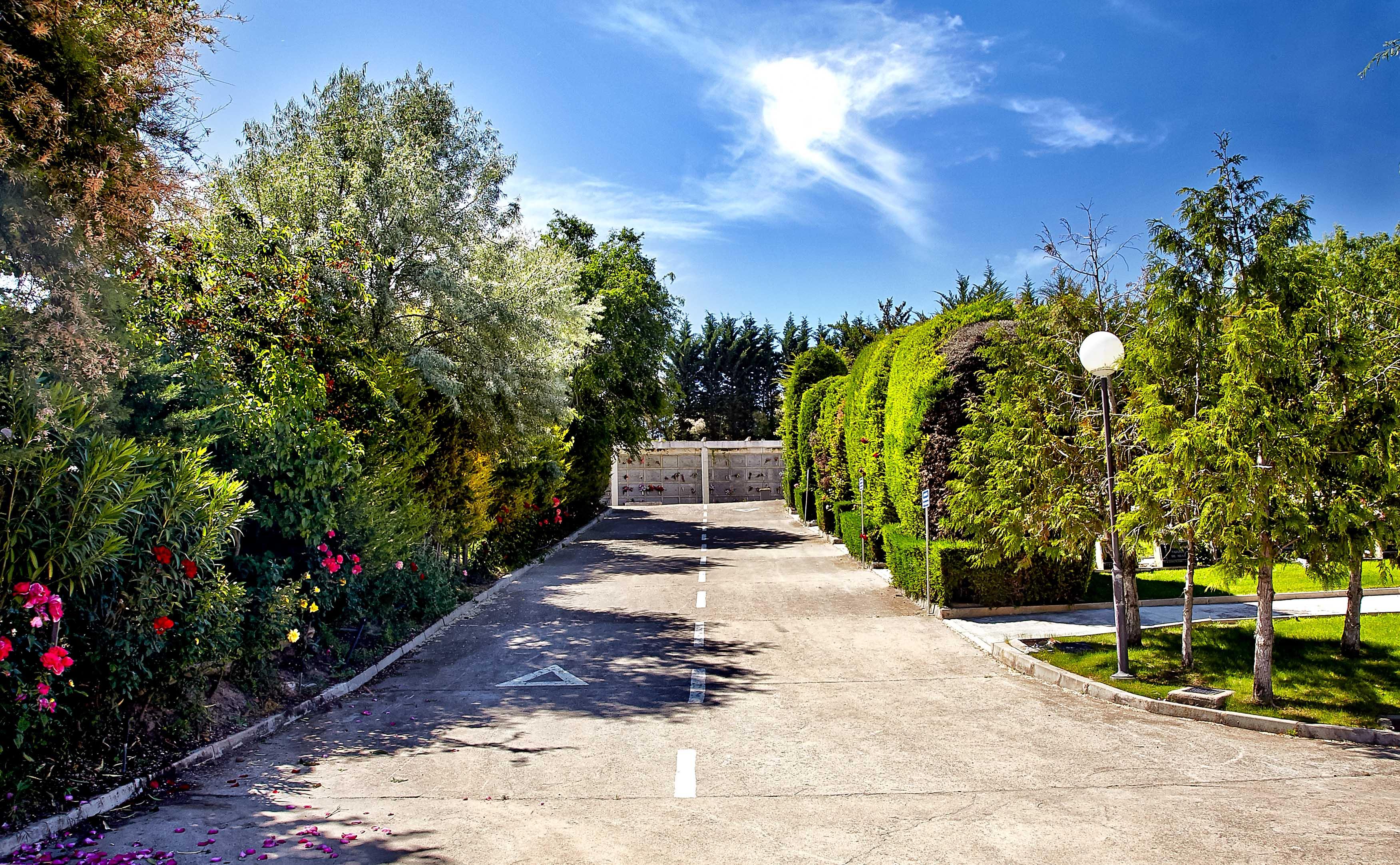 Cementerio jard n parque el salvador grupo el salvador for Cementerio jardin